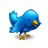 animal-oiseau-bleu-twitter-icone-3962-48